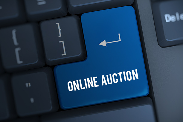 Coin Auction Toronto Online - Auction Network